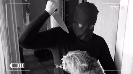 thieve : The real surveillance camera photographed and recorded the robber with a knife to get into the house and tries to kill the dog. Stock Footage