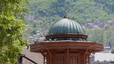 bascarsija : Sarajevo old town top of minaret Bascarsija pigeons