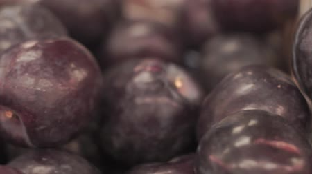 śliwka : plums on the market Wideo