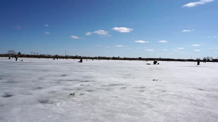 frozen lake : lot of fishermen on the ice, winter sport ice fishing