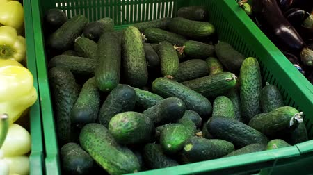 scaffale supermercato : sale of cucumbers in the supermarket background