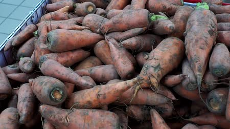 stragan : carrots background selling vegetables in the hypermarket