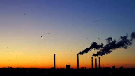 rafineria : Sunset over a Smoking thermal power plant. The sun moves over the cooling towers and chimneys. Thick smoke rises high.. Flying birds on sunset background. Birds fly South