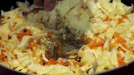 укроп : addition of spices, dried dill into the cabbage. Preparation of stewed vegetables cabbage Стоковые видеозаписи