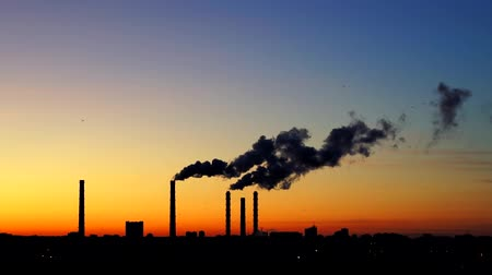 węgiel : smoke from the factory chimneys at sunset. Chimneys of Power Plant at Sunset. Air Pollution Concept. Flying birds on sunset background. Birds fly South