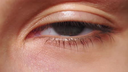 Beautiful young womans eye close-up shot. Female model with well-kept skin. beauty and cosmetics concept.
