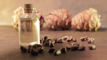 orzech : oil from pine nuts. the concept of healthy food. Use of oil for cosmetic purposes