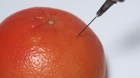 szelektív összpontosít : Injection into grapefruit - fruit and syringe chemical GMOfood. selective focus