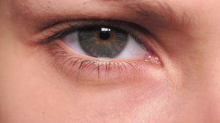 zelené oči : Eyes Look Up Close. The green-eyed girl stared at the camera. Macro Close up of human green eye