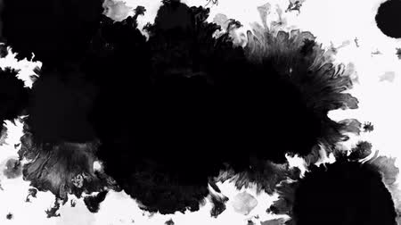 pulverização : Large drops of ink fill the frame. Stock Footage