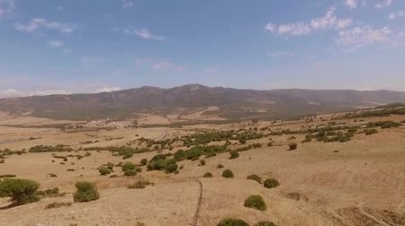 drone : Aerial View from Flying Drone Over Dry Field