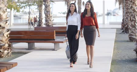 eleganckie : Two stylish elegant women walking together