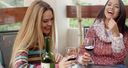 wine red : Two Girls Having Glasses of Wine at the Cafe