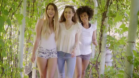 śmiech : Group of black and white female friends laughing and looking at camera walking in hedge together.