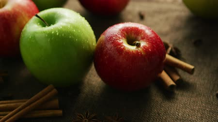 anis : Closeup green and red apple with cinnamon and anise on canvas background