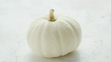 disposição : Fresh ripe white pumpkin with dry stem placed on white background