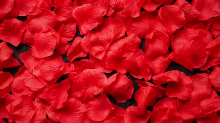 integração : Background of beautiful red rose petals. Valentine Day or Love concept. Top view with copy space. Stock Footage