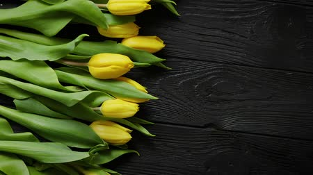 marcha : Composition of fresh yellow tulips placed in row on black rustic wooden table. Spring theme with copy space. Selective focus.