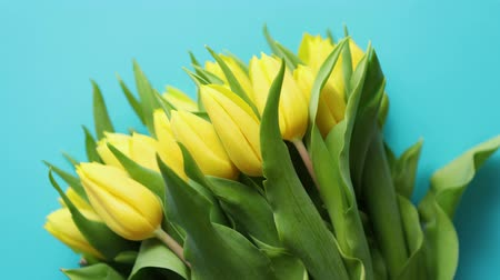 tulipan : Holiday contept decoration with easter eggs and yellow tulips over blue background. Top view with copy space.