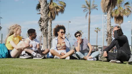 içerik : Group of modern multiracial people gathering on green lawn with palms chatting in leisure while spending summer vacation together Stok Video