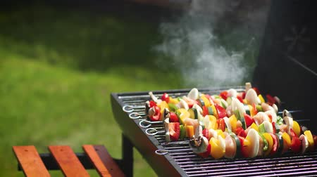 špejle : Colorful and tasty grilled shashliks on outdoor summer barbecue. Garden party idea