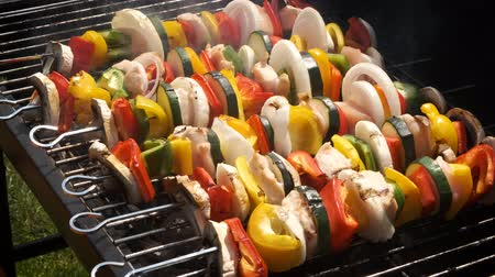 chicken recipes : Colorful and tasty grilled shashliks on outdoor summer barbecue. Garden party idea
