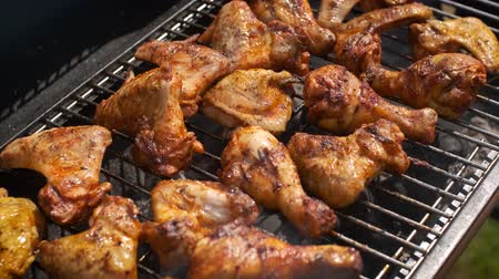 marinado : Delicious chicken pieces frying on barbecue grill. Outdoor summer party ideas. Vídeos