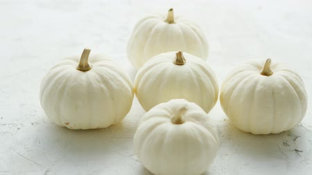 celý : Heap of small white-colored pumpkins with dry stems on white background