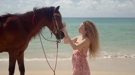 zeepaard : Side view of charming woman communicating with strong mature horse on sandy beach with serene waving water