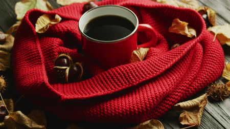 Closeup shot of dry autumn leaves and fresh nuts lying on wooden table near warm knitted scarf and mug of aromatic hot drink Wideo