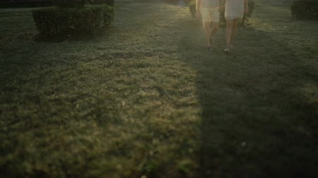 tilt shift : Love couple. Beautiful happy couple in love walking outdoors at sunset. Slow motion.Tilt shift. Stock Footage