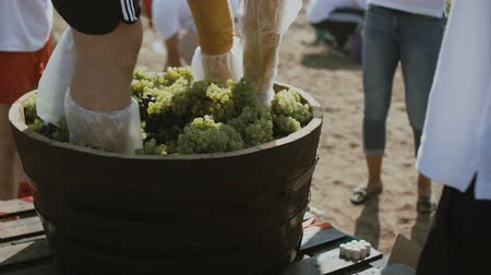 homemade wine making. Stomp grapes in a wooden barrel