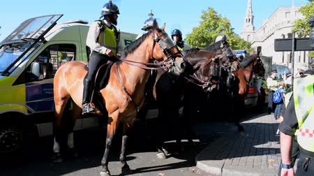 mounted : LONDON - SEPTEMBER 20, 2019: Mounted police lined up in front of police vans at an Extinction Rebellion march at Trafalgar Square, London