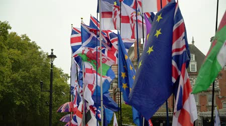 оставаться : LONDON - OCTOBER 23, 2019: Brexit demonstration with British, English, Welsh, UKIP and EU flags waving in the breeze outside the Houses of Parliament