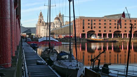 viktoriánus : Zoom out from The Liver Building to reveal the Albert Dock in Liverpool. Stock mozgókép