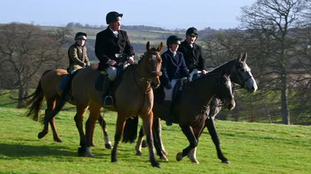 cruelty : Aske Hall, Richmond, North Yorkshire, UK - February 08, 2020: Four people riding horses slowly across a field prior to the beginning of a fox hunt. A lake and English countryside in the background as the camera pans Stock Footage