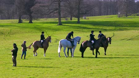 mounted : Aske Hall, Richmond, North Yorkshire, UK - February 08, 2020: Four horse riders in the grounds of Aske Hall on a sunny day