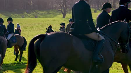 richmond park : Aske Hall, Richmond, North Yorkshire, UK - February 08, 2020: Young horse riders gathered and waiting for the fox hunt to start with English countryside in the background Stock Footage
