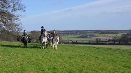 mounted : Aske Hall, Richmond, North Yorkshire, UK - February 08, 2020: Slow zoom as young horse riders arrive for the start of a fox hunt through the English countryside