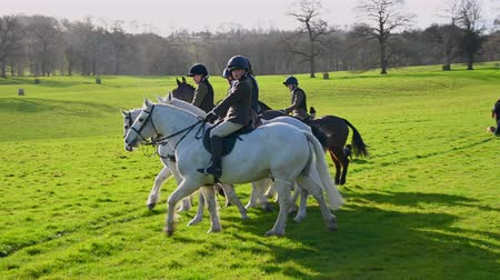 mounted : Aske Hall, Richmond, North Yorkshire, UK - February 08, 2020: Panning shot of a group of young horse riders gathering for the start of a fox hunt in the English countryside on a sunny day