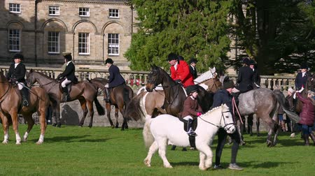 mounted : Aske Hall, Richmond, North Yorkshire, UK - February 08, 2020: Horse riding hunt official in red coat, surrounded by members of the field waiting for the fox hunt to start as a very young horse rider passes in front