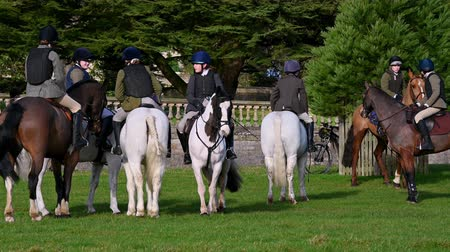 cruelty : Aske Hall, Richmond, North Yorkshire, UK - February 08, 2020: Young fox hunters gathered on horse back waiting for a hunt to begin