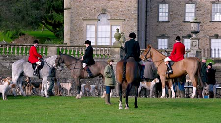 Aske Hall, Richmond, North Yorkshire, UK - February 08, 2020: Tight shot of horse riding fox hunt officials and other members of the field with English Foxhounds gathered in front of traditional Georgian country house Stock mozgókép