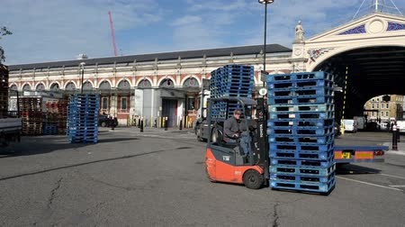 empilhamento : LONDON - SEPTEMBER 30, 2019: Forklift truck carrying wooden pallets around the back of a lorry trailer at Smithfield Market
