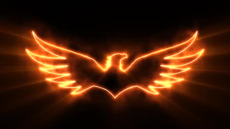 mascot : Orange Burning Eagle Logo with Reveal Effect and Light Rays Stock Footage