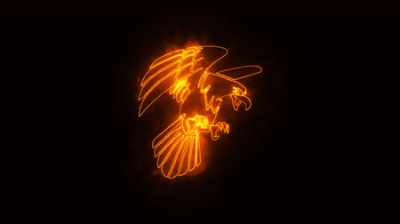 tatoo : Orange Burning Eagle Animated with Reveal Effect Stock Footage