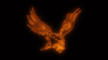 tatoo : Orange Burning Eagle Animated Loop Graphic Element