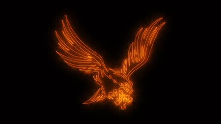 tatoo : Orange Burning Eagle Animated Logo with Reveal Effect Stock Footage