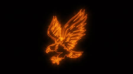 tatoo : Orange Burning Eagle Loopable Graphic Element