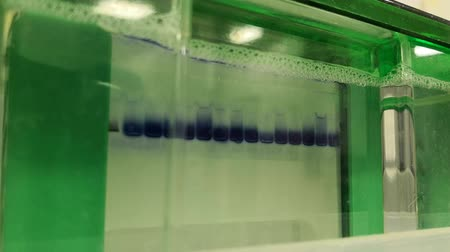 Electrophoresis. Scientific experiment in biochemistry, biotechnology or molecular biology. Separation technique of proteins and other molecules.